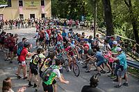 Ilnur Zakarin (RUS/Katusha) & Domenico Pozzovivo (ITA/AG2R-LaMondiale) cheered on up the Foza climb (1086m)<br /> <br /> Stage 20: Pordenone › Asiago (190km)<br /> 100th Giro d'Italia 2017