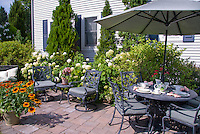 Patio furniture next to house with hydrangeas in bloom, container of rudbeckia
