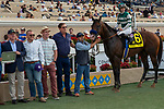 """DEL MAR, CA  AUGUST 17:  DEL MAR, CA  AUGUST 17:  #6 Higher Power, ridden by Flavien Prat, and the connections in the winners circle after winning  the TVG Pacific Classic (Grade 1) """"Win and You're In Breeders' Cup Classic Division"""" on August 17, 2019 at Del Mar Thoroughbred Club in Del Mar, CA..(Photo by Casey Phillips/Eclipse Sportswire/CSM)"""