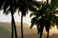 Mountains near Hanalei with palm trees. Kauai, Hawaii