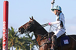 WELLINGTON, FL - JANUARY 08:  #1 Grant Ganzi of the Grand Champions Polo Club, celebrates after scoring a goal, against Coca Cola during the early rounds of the Joe Barry Memorial Cup, at the International Polo Club, Palm Beach on January 03, 2017 in Wellington, Florida. (Photo by Liz Lamont/Eclipse Sportswire/Getty Images)
