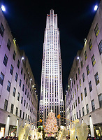 Weihnachtsbaum am Rockefeller Center - 08.12.2019: New York