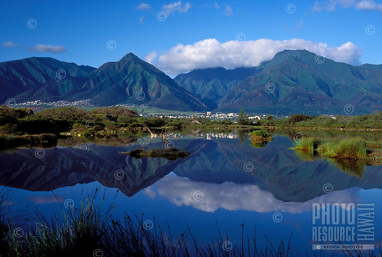 Kanaha Pond reflects the West Maui Mountains on a calm day.