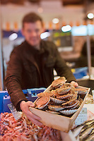 Europe/France/Bretagne/29/Finistère/Brest: Yvon Morvan restaurant: L'Armen fait son marché - sur l'étal du poissonnier - Choix des coquilles Saint-Jacques [Non destiné à un usage publicitaire - Not intended for an advertising use]