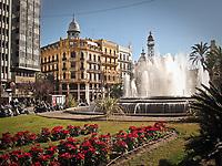 Cedez_Valencia_Spain_2017