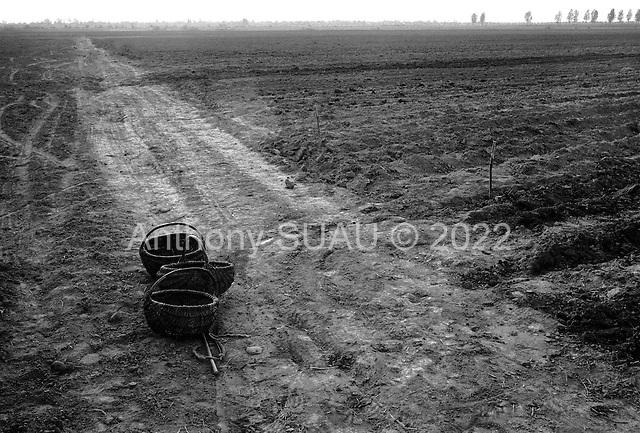Romania<br /> 1991<br /> Countryside