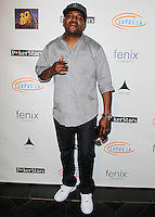 HOLLYWOOD, LOS ANGELES, CA, USA - SEPTEMBER 18: Mekhi Phifer arrives at the 'Get Lucky For Lupus' 6th Annual Poker Tournament held at Avalon on September 18, 2014 in Hollywood, Los Angeles, California, United States. (Photo by Celebrity Monitor)