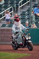 "Idaho Falls Chukars mascot ""Charlie the Chukar"" between innings of a game against the Orem Owlz at Melaleuca Field on July 14, 2019 in Idaho Falls, Idaho. The Owlz defeated the Chukars 6-2. (Stephen Smith/Four Seam Images)"