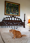 One of the most famous of Hemingway's cats, sitting on his bed at the Hemingway House on Key West, Florida, USA.