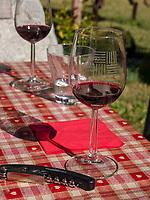 Weinprobe beim Klosterbauer, Algund bei Meran, Region Südtirol-Bolzano, Italien, Europa<br /> wine tasting with the Convent farmer, Lagundo near Merano, Region South Tyrol-Bolzano, Italy, Europe