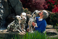 Middle-aged woman gets a big kiss from one of her three dalmatians.