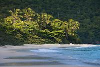 Cinnamon Beach<br /> Virgin Islands National Park<br /> St. John<br /> U.S. Virgin Islands