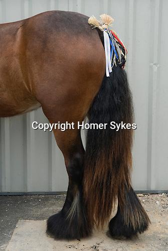 Gypsy annual Horse Fair. Wickham Hampshire UK. Traditional decoreated pony tails