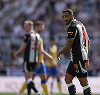 28th August 2021; St James Park, Newcastle upon Tyne, England; EPL Premier League football, Newcastle United versus Southampton; Callum Wilson of Newcastle United looks back after firing a shot wide