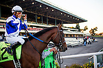 Rankhasprivleges with Martin Garcia up at the Cash Call Futurity on December 14, 2013 at Betfair Hollywood Park in Inglewood, California .(Alex Evers/ Eclipse Sportswire)