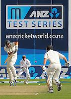 131211 International Test Cricket - NZ Black Caps v West Indies