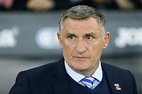 Blackburn Rovers manager Tony Mowbray stands on the touchline during the Sky Bet Championship match between Swansea City and Blackburn Rovers at the Liberty Stadium, Swansea, Wales, UK. Tuesday 23 October 2018