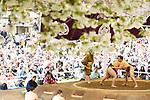 General vew, <br /> APRIL 17, 2017 - Sumo : Yasukuni Shrine Honozumo is a ceremonial annual sumo tournament held in the precincts of the Yasukuni Shrine in Tokyo, Japan. (Photo by Yohei Osada/AFLO SPORT)