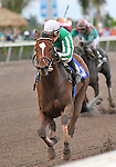 30 January 2009: Capt. Candyman Can (no. 3 at left), with Julien Leparoux in the saddle, wins the 53rd running of the Grade 2 Hutcheson Stakes for three-year-olds over Hello Broadway at Gulfstream Park in Hallandale, Florida.