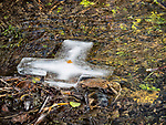 A cross of ice floats down the creek during the blessing of Jackson Creek, January 19, 2018: Theophany and the Blessing of the Waters on January 6th of the old calendar at St. Sava Church, Jackson, Calif. on a wet and rainy day.