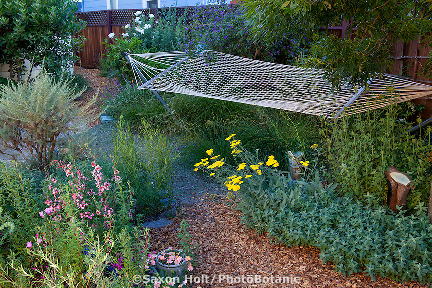 Mulched path winding through backyard garden room with hammock in Sibley drought tolerant garden, Richmond California