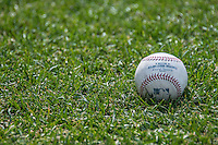 23 July 2016: An Official MLB Rawlings Baseball lies on the Grass prior to a game between the Washington Nationals and the San Diego Padres at Nationals Park in Washington, DC. The Nationals defeated the Padres 3-2 on a Stephen Drew pinch-hit, walk-off triple in the bottom of the 9th inning to tie their series at one game apiece. Mandatory Credit: Ed Wolfstein Photo *** RAW (NEF) Image File Available ***