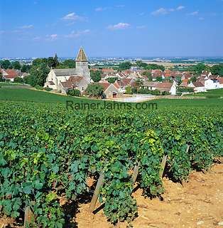 France, Burgundy, Cote d'Or, Fixin: Fixin wine-growing region in the Côte de Nuits subregion of Burgundy   Frankreich, Burgund, Côte d'Or, Fixin: Weinort mit dem Weinberg Côte De Nuits