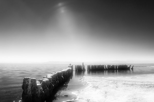 Infrared image of old pier pilings with sun shining down.  At Bombay Beach, Salton Sea, CA