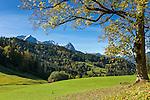 Germany, Bavaria, Upper Bavaria, Werdenfelser Land, hiking region upon Garmisch-Partenkirchen, at background Wetterstein mountains with summits Alpspitze, Zugspitze and Waxenstein, very back in the centre summit Daniel 2.340 m, highest mountain of the Ammergau Alps located in Tirol (Austria) | Deutschland, Bayern, Oberbayern, Werdenfelser Land, Wanderregion oberhalb von Garmisch-Partenkirchen, im Hintergrund das Wettersteingebirge mit Alpspitze, Zugspitze und Waxenstein, Bildmitte ganz hinten der Daniel mit 2.340 m hoechster Gipfel der Ammergauer Alpen im oesterreichischen Bundesland Tirol