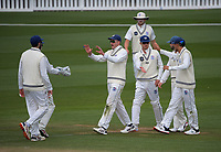 Auckland players celebrate dismissing Fraser Colson during day three of the Plunket Shield match between the Wellington Firebirds and Auckland Aces at the Basin Reserve in Wellington, New Zealand on Monday, 16 November 2020. Photo: Dave Lintott / lintottphoto.co.nz