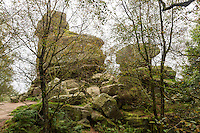 UK, England, Yorkshire.  Brimham Rocks, a National Trust Location.