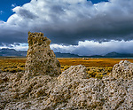 Tufa Towers, Simon Spring, Mono Lake, Mono Basin National Forest Scenic Area, Inyo National Forest, California