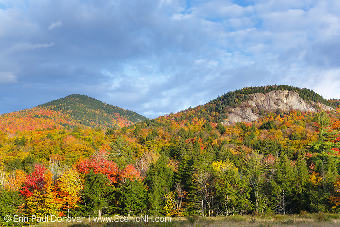 Autumn foliage along the Kancamagus Highway (route 112), which is one of New England's scenic byways in the White Mountains, New Hampshire on a cloudy day.
