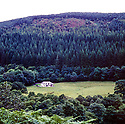 Corris house in Wales  CREDIT Geraint Lewis
