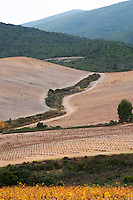 Chateau des Erles. In Villeneuve-les-Corbieres. Fitou. Languedoc. Spectacular view vista over the hilltop vineyard dominated by schist. France. Europe.