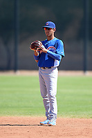Chicago Cubs shortstop Carlos Penalver (11) during an Instructional League game against the Arizona Diamondbacks on October 5, 2013 at Salt River Fields at Talking Stick in Scottsdale, Arizona.  (Mike Janes/Four Seam Images)