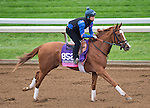 October 26, 2015 :  Catch a Glimpse, trained by Mark E. Casse and owned by Gary Barber , Michael James Ambler  & Windways Farm, exercises in preparation for the Breeders' Cup Juvenile Fillies Turf at Keeneland Race Track in Lexington, Kentucky on October 26, 2015. Scott Serio/ESW/CSM