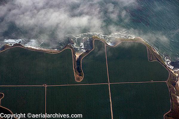 aerial photograph farming coastal Santa Cruz county, California