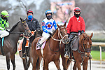 February 27, 2021: #8, Best Kept Secret in the post parade for the Spring Fever Stakes at Oaklawn Park in Hot Springs, Arkansas. Ted McClenning/Eclipse Sportswire/CSM