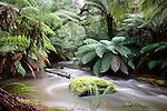 Australia-Tasmania