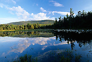 Lily Pond on the side of the Kancamagus Highway (route 112) in the White Mountains, New Hampshire USA.