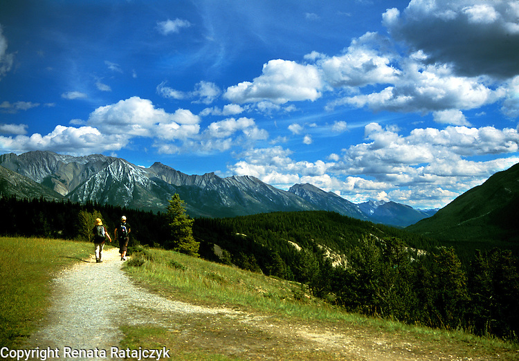 On the way to Hoodoos, Banff area in  Alberta, Canada. <br /> Original on slide. Tiff file is available on request.