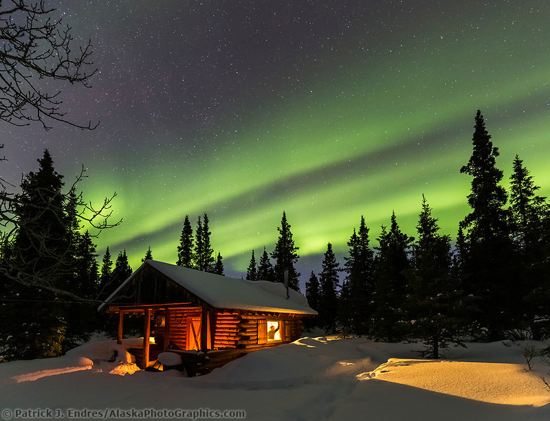A man peers out of the window at the northern lights, from a rustic log cabin nestled among spruce trees in the Alaska Range mountains.