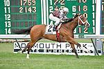 13 JUN 2010: Starfish Bay, John Velazquez up, wins the $100,000 Candy Eclair Stakes.
