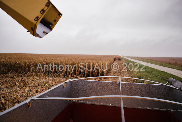 "Wataga, Illinois<br /> October 13, 2014<br /> <br /> Harvesting GMO grain in central Illinois on the O""Connor farm"