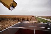 """Wataga, Illinois<br /> October 13, 2014<br /> <br /> Harvesting GMO grain in central Illinois on the O""""Connor farm"""