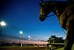 Scenes from morning workouts for the 138th Kentucky Derby at Churchill Downs in Louisville, Kentucky on May 3, 2012.
