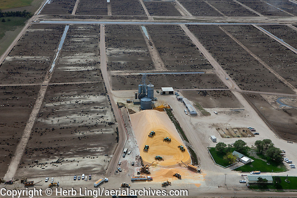 aerial photograph of corn deliveries to cattle feedlots in Nebraska
