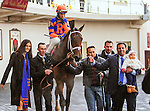 OZONE PARK, NY - APRIL 09: *Outwork #8  with John Velazquez aboard. wins the Wood Memorial Stakes at Aqueduct Race Track on April 9, 2016, in Ozone Park, New York. (Photo by Sue Kawczynski/Eclipse Sportswire/Getty Images)