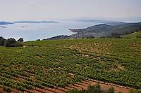 Vineyard. View of Ouranopolis. Mount Athos. Tsantali Vineyards & Winery, Halkidiki, Macedonia, Greece. Metoxi Chromitsa of St Panteleimon monastery.
